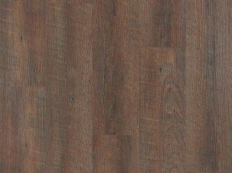 Scarlet-Oak-Dark-Brown-010-PSH