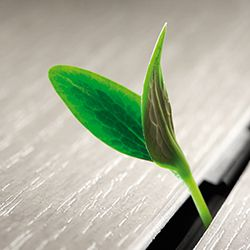 PURE-environmentally-friendly_250x250px